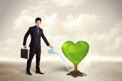 Affärsman som bevattnar det hjärta formade gröna trädet Royaltyfri Bild