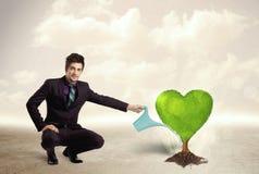 Affärsman som bevattnar det hjärta formade gröna trädet Arkivfoto