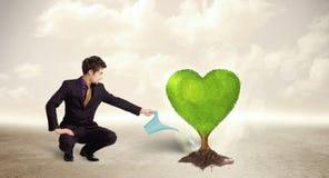 Affärsman som bevattnar det hjärta formade gröna trädet arkivbild