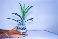 Affärsmanhand som mycket rymmer en exponeringsglaskrus av mynt på vit bakgrund arkivfoton