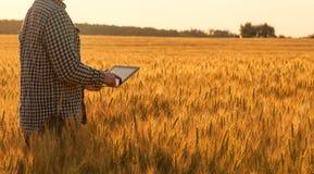 Affärsmannen är på ett fält av moget vete och rymmer en minnestavladator arkivbild