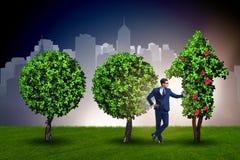 Affärsmannen i hållbart grönt utvecklingsbegrepp Royaltyfri Bild