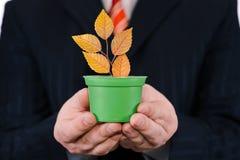 Affärsmannen rymmer den gröna krukan med en växt royaltyfri bild