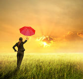 Affärsparaplykvinna som plattforer till solnedgången arkivfoton