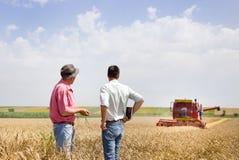 Affärspartners på vetefält royaltyfri bild