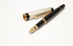 Affärsreservoarpenna Royaltyfri Foto