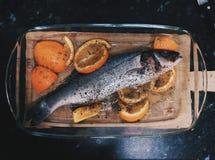 Affaires de poisson Photographie stock