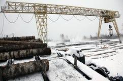 Affare del legname di economia 2014 nell'inverno Immagini Stock
