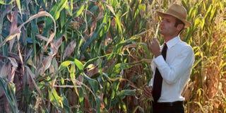 Affare e agricoltore che controllano i suoi prodotti Fotografia Stock Libera da Diritti
