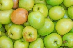 Affe Apple Stockfoto