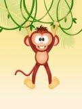 Affe auf Liane stock abbildung