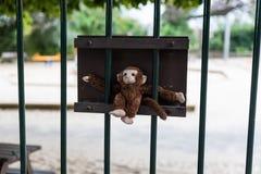 Affe auf Zaun Lizenzfreie Stockfotos