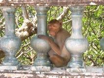Affe bei Phra Nakhon Khiri Lizenzfreie Stockfotos