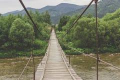 Affe-Brücke Stockfoto