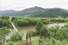 Affe-Brücke lizenzfreie stockfotos