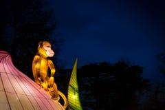 Affe, der auf einer Lotosblume sitzt Stockfotografie