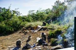 Affe, der Berg Rinjani Lombok Indonesien isst Lizenzfreies Stockbild