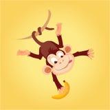 Affe, der an der Liane hängt stock abbildung