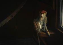 Affe, der im Raum sitzt Lizenzfreies Stockfoto