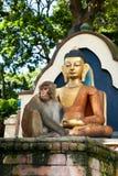 Affe, der nahe Buddha-Statue sitzt. Nepal Stockbilder