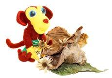 Affe, der vor trockenen Blättern und Blumen sitzt Stockbild