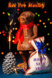 Affe des roten Feuers mit Wunderkerze Lizenzfreie Stockbilder