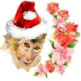 Affe in einem roten netten Santa Claus-Hut Überraschen Lizenzfreie Stockfotografie