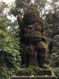 Affe Forest Sanctuary Padangtegal Mandala Wisata Wanara Wana Sacred in Ubud, Bali, Indonesien Lizenzfreies Stockbild