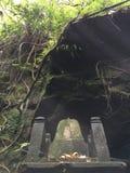 Affe Forest Sanctuary Padangtegal Mandala Wisata Wanara Wana Sacred in Ubud, Bali, Indonesien Stockbilder