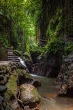 Affe Forest Sanctuary, Ubud, Bali Lizenzfreie Stockbilder