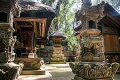 Affe Forest Temple 8 Balis Indonesien Ubud Stockbild