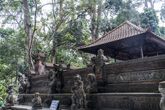 Affe Forest Temple Balis Indonesien Ubud Stockbild
