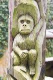 Affe geschnitzt auf dem Holz Stockfotos