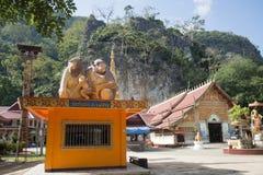 AFFE-HÖHLEN-TEMPEL THAILANDS CHIANG RAI MAE SAI Lizenzfreies Stockbild