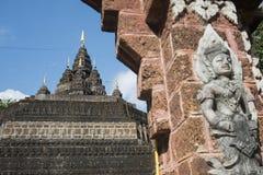 AFFE-HÖHLEN-TEMPEL THAILANDS CHIANG RAI MAE SAI Stockbilder