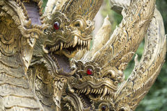 AFFE-HÖHLEN-TEMPEL THAILANDS CHIANG RAI MAE SAI Lizenzfreie Stockbilder