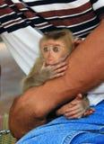 Affe in ihren Armen Lizenzfreie Stockfotografie