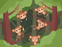 Affe im Dschungel Wilde kleine Tiere, die auf dem Baum und Liane und Schimpanse essen Fruchtbananen-Vektorkarikatur spielen lizenzfreie abbildung