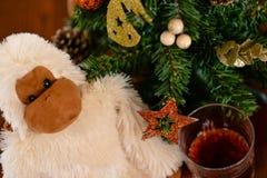 Affe ist das Symbol chinesischen neuen Jahres 2016 Stockbild
