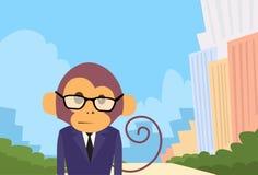 Affe-Karikatur-Geschäftsmann Suit Profile Lizenzfreie Stockfotografie