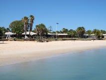 Affe Mia, Haifisch-Bucht, West-Australien Stockbilder
