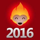 Affe mit 2016 Feuern Stockfoto