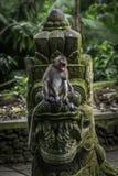 Affe-Monument lizenzfreie stockfotografie