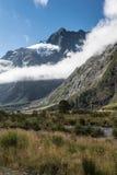 Affe-Nebenfluss in Nationalpark Fiordland, Neuseeland Stockbilder