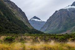 Affe-Nebenfluss, Neuseeland Lizenzfreies Stockfoto