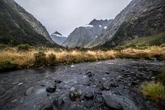 Affe-Nebenfluss, Neuseeland Stockbilder