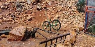 Affe-Park in Yodfat Stockfoto