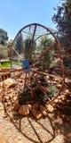 Affe-Park in Yodfat Lizenzfreie Stockfotos