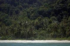 Affe-Strand, Nationalpark Penangs, Malaysia Lizenzfreie Stockfotografie