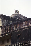 Affe-Tempel in Idia Lizenzfreie Stockfotos